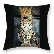 Amur Lepard I Hear Something Throw Pillow