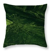 An Aerial View Of The Nazca Lines. They Throw Pillow