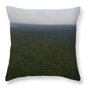 An Aerial View Shows The Forests Throw Pillow