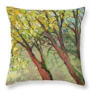An Afternoon At The Park Throw Pillow by Jennifer Lommers
