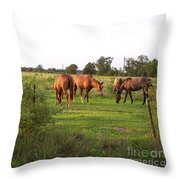 An Afternoon With Friends Throw Pillow
