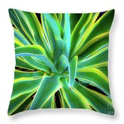 An Agave In Color  Throw Pillow