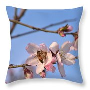 An Almond Tree Blooming Throw Pillow