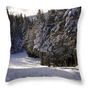 An Alpine Ski Trail On Wildcat Mountain Throw Pillow