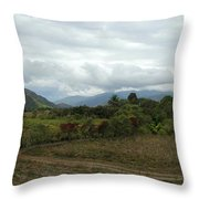 An Amazing View Throw Pillow
