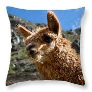 An Andean Icon Throw Pillow