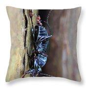 An Ant's Haul Throw Pillow