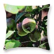 An Apple A Day Throw Pillow
