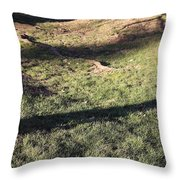 An Arlington Grave With Flowers And Shadows Throw Pillow