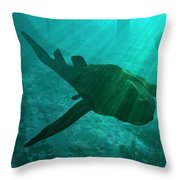 An Armored Bothriolepis Glides Throw Pillow by Walter Myers