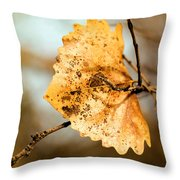 An Autumn Leaf Suspended Throw Pillow