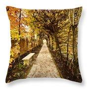 An Autumn Path Throw Pillow