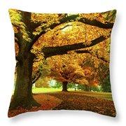 An Autumn Walk Through History Throw Pillow