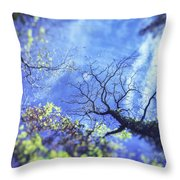 An Early Autum Day Throw Pillow