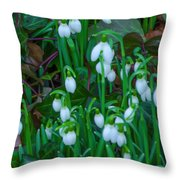 An Early Spring Throw Pillow