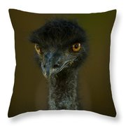 An Emu At The Lincoln Childrens Zoo Throw Pillow