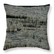 An Evening Float Throw Pillow