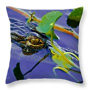 An Eye For The Camera Throw Pillow
