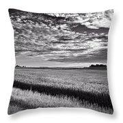 An Iowa Sunset Throw Pillow