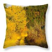 An October Path   Throw Pillow