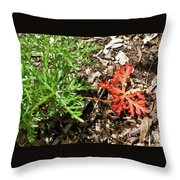 An Oddity Of Nature Throw Pillow