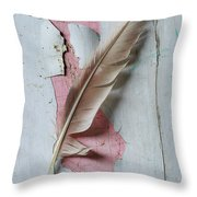 An Old Door And Feather Throw Pillow