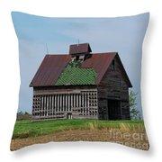 An Old Illinois Barn Throw Pillow
