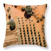 An Olive Grove Between The Succulent Throw Pillow
