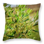 An Olive Tree Throw Pillow