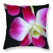 An Orchid Throw Pillow
