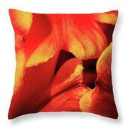 An Overlap Of Color Throw Pillow