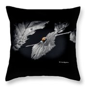An Unreachable Limit Throw Pillow