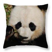 An Up Close Look At A Giant Panda Bear Throw Pillow