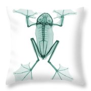 An X-ray Of A Flying Frog Throw Pillow