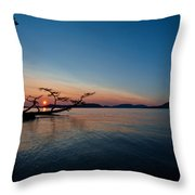Anacortes Vision Throw Pillow
