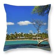 Anaehoomalu Bay Throw Pillow