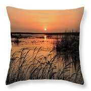 Anahuac Nation Wildlife Refuge Sunset Throw Pillow