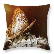 Anartia Jatrophae - White Peacock Butterfly  Throw Pillow
