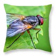 Anatomy Of A Pest Throw Pillow