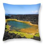 Anchialine Pond Throw Pillow