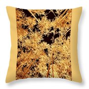 Anchorage Winter Birch Trees Throw Pillow