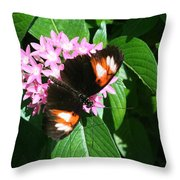Anchored Down - Butterfly Throw Pillow