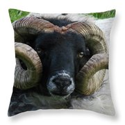 Anchored In Grace Throw Pillow