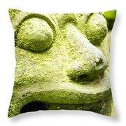 Ancient Artifacts 2 Throw Pillow