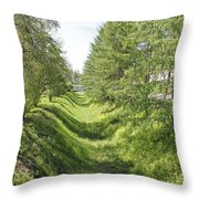 Ancient Ditch Throw Pillow