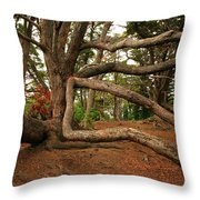 Ancient Forest Throw Pillow