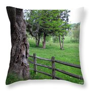 Ancient Guardian Throw Pillow
