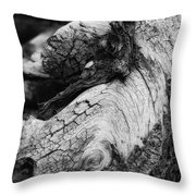 Ancient Knight's Stead Throw Pillow