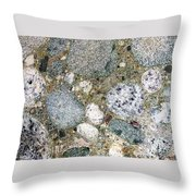 Ancient Lake Bed Throw Pillow