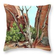 Ancient Lands Throw Pillow